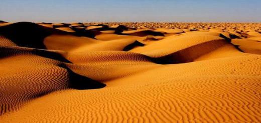 Черные мили Сахары