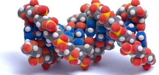 ДНК и невидимые мосты вселенной
