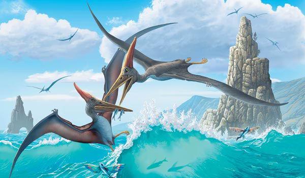 Птерозавр сегодня